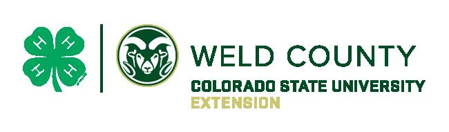 The Colorado 4-H Horse Buckle Program Logo