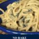 No-Bake Turkey Tetrazzini
